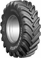 600/70 R30 161A8/158D  AGRIMAX FORTIS TL  BKT